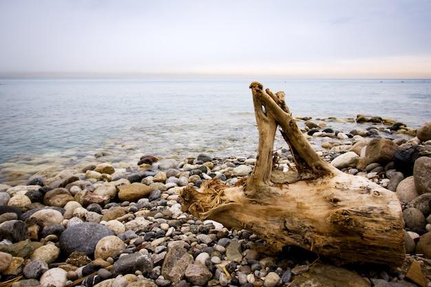 Fond de nature tranquille avec des cailloux