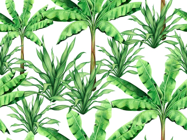 Fond de nature tropicale de peinture à l'aquarelle avec des feuilles vertes dessinées à la main.
