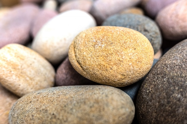 Fond naturel composé de galets et de petites roches.