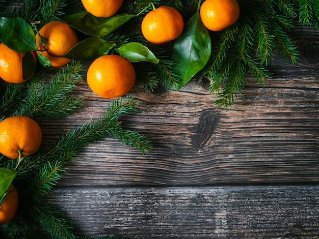 Fond de noël avec des branches de mandarines et de sapin