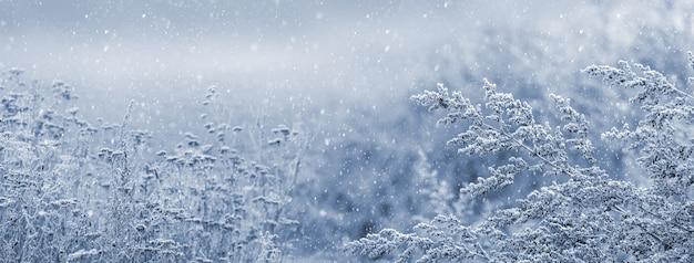 Fond de noël et du nouvel an avec de fortes chutes de neige sur fond de plantes enneigées