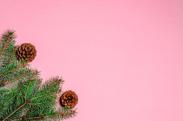 Fond de noël rose vif avec des branches de sapin et des pommes de pin. copiez l'espace, pose à plat. vue d'en-haut.