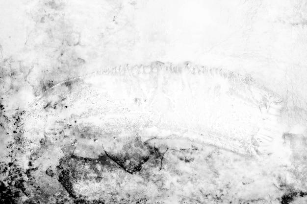 Fond noir et blanc abstrait. fond de texture grunge