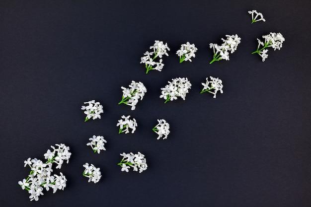 Fond noir avec des fleurs lilas blanches