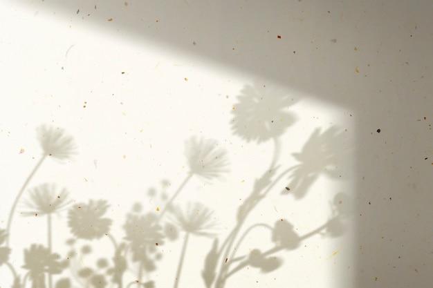 Fond avec ombre de champ de fleurs pendant l'heure d'or