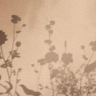 Fond avec ombre de champ floral