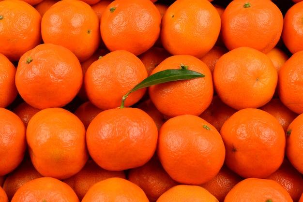 Fond orange mandarine.