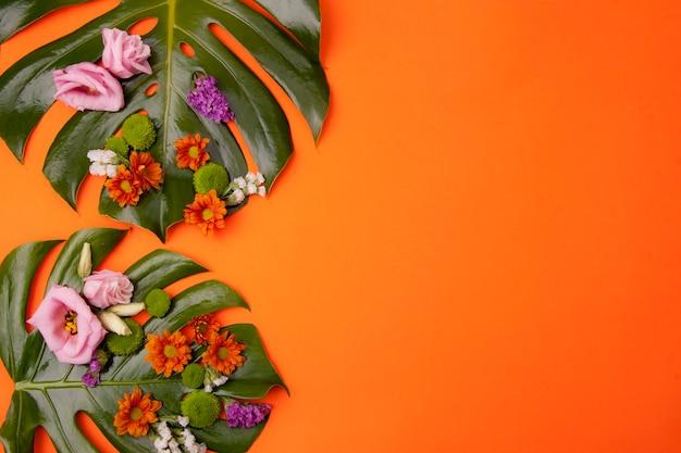 Fond orange tropical