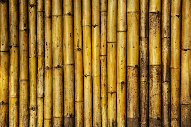 Fond et papier peint de bambou de tronc de mur.