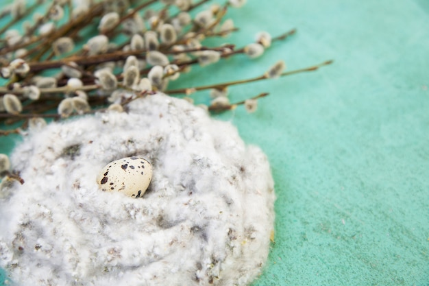 Fond de pâques avec nid