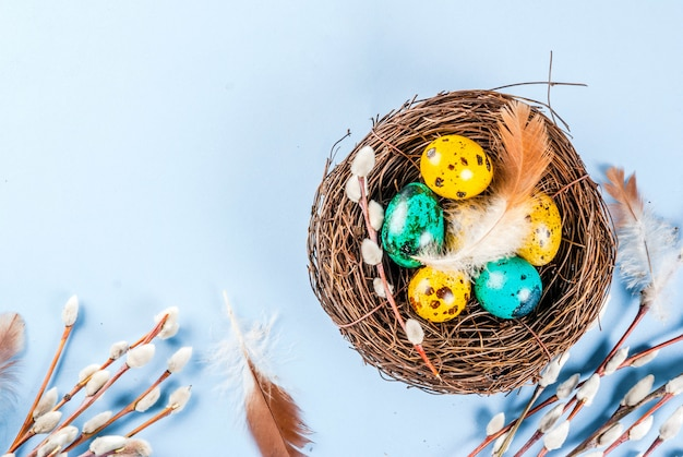 Fond de pâques avec des nids d'oiseaux et des œufs