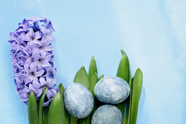 Fond de pâques avec des oeufs bleus et des fleurs de printemps