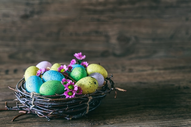 Fond de pâques. œufs colorés dans un nid avec des fleurs de printemps sur fond sombre en bois