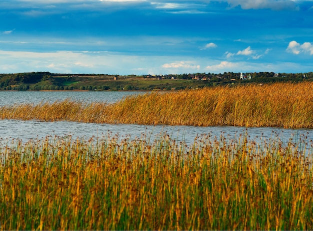 Fond de paysage dramatique automne backwater