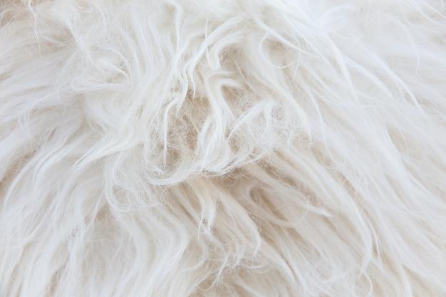 Fond en peau de mouton