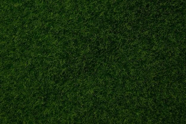 Fond de pelouse verte. herbe verte, vue de dessus.
