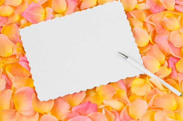 Fond de pétales de roses roses, feuille de papier et stylo