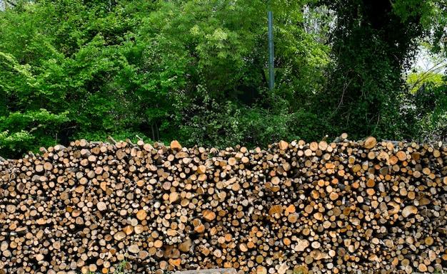 Fond de pile de bois