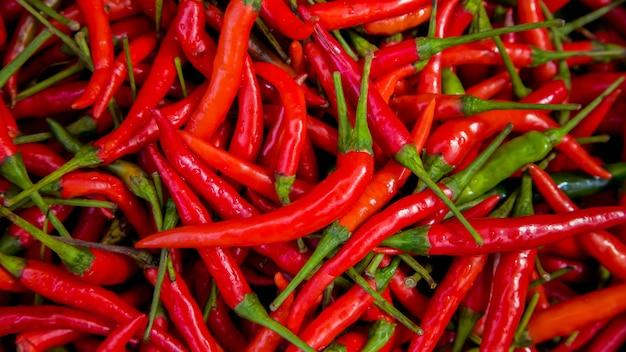 Fond de piments rouges frais, mise au point sélective. piments thaïlandais. ingrédient bio cuisine thaïlandaise.