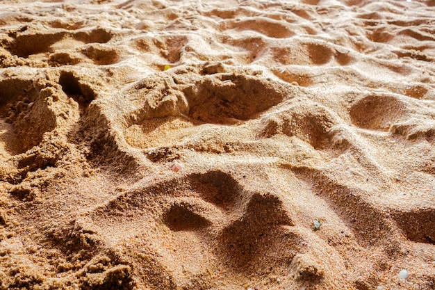 Fond de plage de sable texturé