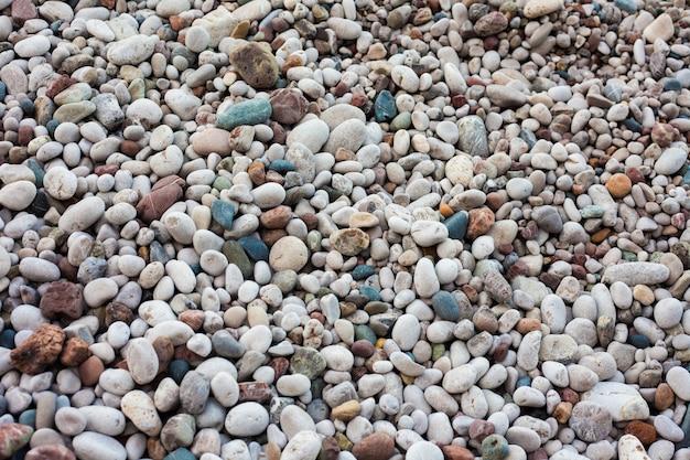 Fond de plage sablonneux et rocheux