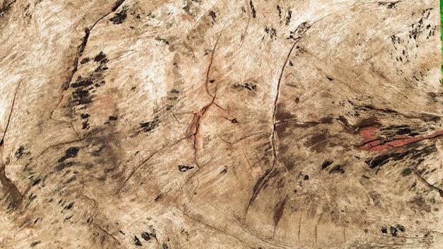Fond de plancher en bois à l'automne