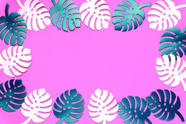 Fond de plante monstera coloré. feuilles de monstera sur fond rose en plastique