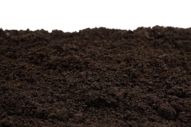 Fond de plante de terre noire.