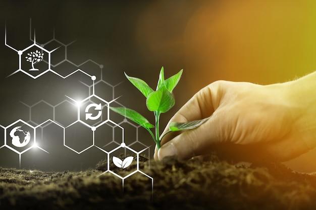 Fond de plantes avec structure biochimique.