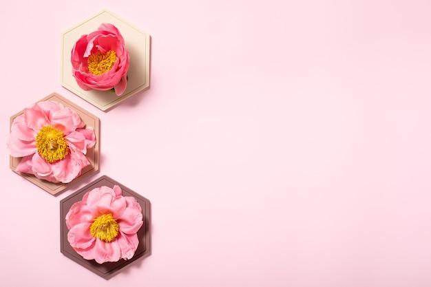 Fond plat abstrait avec figure de nids d'abeilles pastel. toile de fond flatlay créatif. idée créative, mise en page.