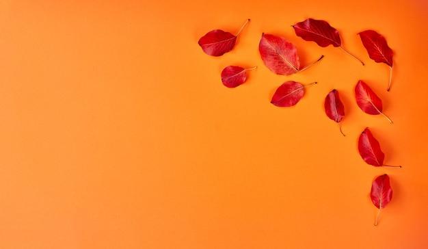 Fond plat d'automne sur orange. composition avec des feuilles rouges réalistes et une tasse de café. bonjour concept d'octobre