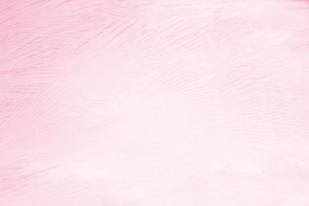 Fond de plumes rose tendre