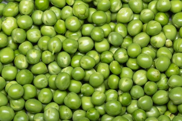 Fond de pois vert. pisum sativum