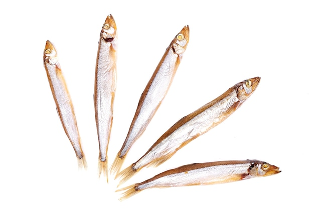 Fond de poisson fumé isolé