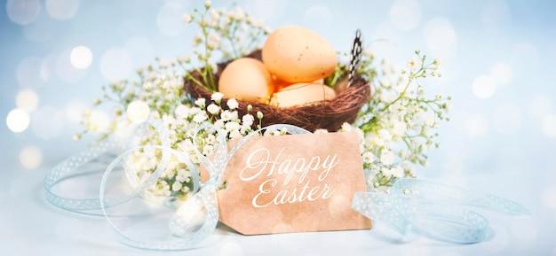 Fond de printemps, nid avec oeuf, joyeuses pâques