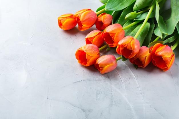 Fond de printemps avec des tulipes colorées orange. femmes, fête des mères, carte de voeux, copie espace image