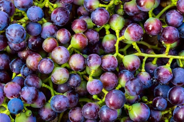 Fond de raisins bleus, raisins sombres, raisins rouges, raisins à vin.