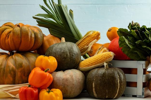 Fond de récolte d'automne de citrouilles et autres légumes
