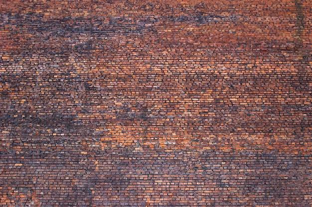 Fond rétro de brique pour la conception, mur de pierre de texture