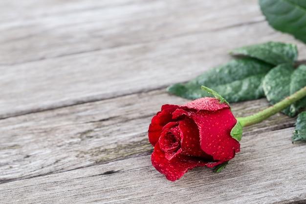 Fond romantique avec une floraison rose rouge sur une table rustique en bois avec la surface.