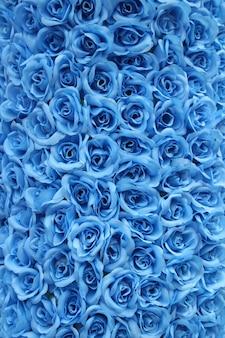 Fond rose bleu