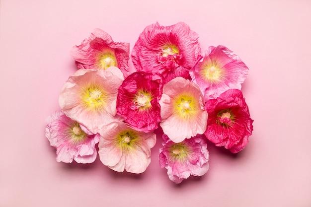 Fond rose de fleurs de mauve d'été. concept de vacances beauté minimalisme.