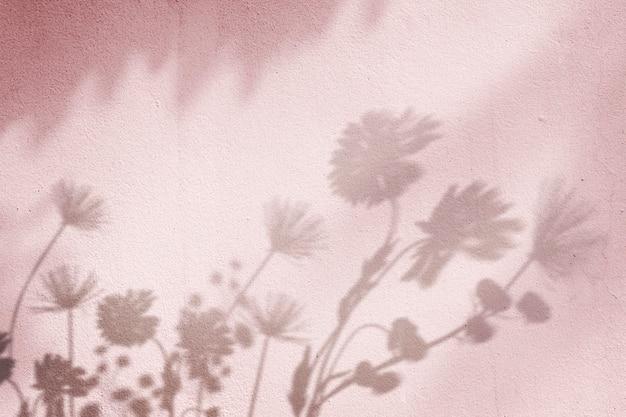 Fond rose avec ombre de champ floral