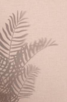 Fond rose avec ombre de feuilles de palmier