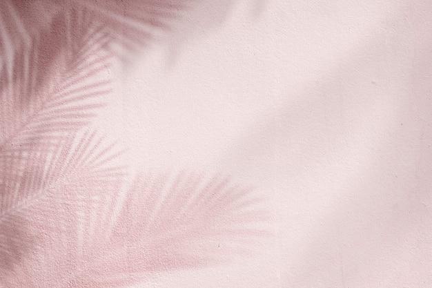 Fond rose avec palmier