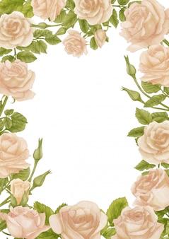 Fond de roses aquarelle