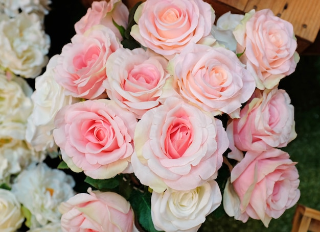 Fond de roses roses