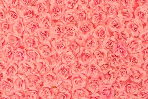 Fond de roses