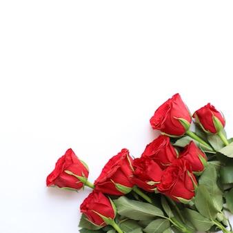 Fond rouge de multipurpose de rose pour l'anniversaire, le mariage, l'anniversaire ou d'autres célébrations
