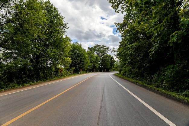 Fond de route nature forêt
